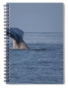 Blue Whale Tail Spiral Notebook