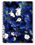 Blue White I Spiral Notebook