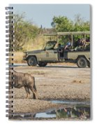 Blue Wildebeest Beside Puddle With Jeep Behind Spiral Notebook