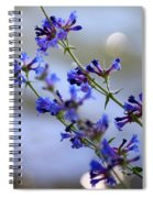 Blue Wildflowers Over Rimrock Lake Spiral Notebook