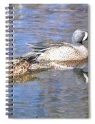 Blue Wings Spiral Notebook