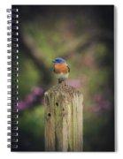 Blue With A Bit Of Pink Spiral Notebook