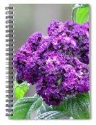 Blue Wonder Heliotrope Spiral Notebook