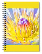 Blue Yellow Lily  Spiral Notebook