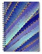 Blue Yucca Spiral Notebook