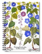 Bluebell And Morning Glory Spiral Notebook