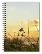 Bluebell In The Sunrise Spiral Notebook