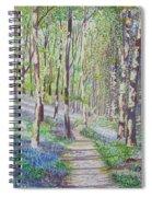 Bluebell Walk At Llanilar Aberystwyth Spiral Notebook