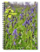 Bluebells In Judy Woods Spiral Notebook