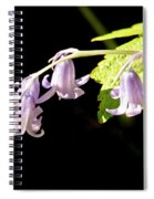 Bluebells Under The Sun Ray. Spiral Notebook