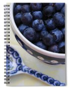 Blueberries And Spoon  Spiral Notebook