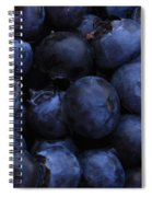 Blueberries Close-up - Horizontal Spiral Notebook