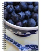 Blueberries In Polish Pottery Bowl Spiral Notebook