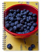 Blueberries In Red Bowl Spiral Notebook