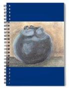 Blueberry Spiral Notebook