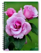 Blueberry Hill Roses Spiral Notebook