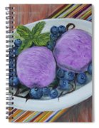 Blueberry Ice Cream Party Spiral Notebook