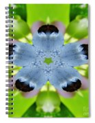 Blueberry Kaleidoscope Spiral Notebook