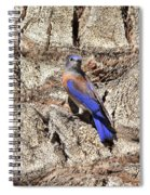 Bluebird On Canary Island Palm II Spiral Notebook