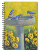 Bluebirds On Birdbath Spiral Notebook