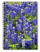 Bluebonnet Blues Spiral Notebook