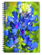 Bluebonnet Fantasy Spiral Notebook