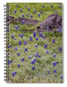 Bluebonnets And Fallen Tree - Texas Hill Country Spiral Notebook