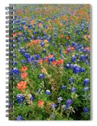 Bluebonnets And Paintbrushes 3 - Texas Spiral Notebook
