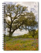 Bluebonnets Paintbrush And An Old Oak Tree - Texas Hill Country Spiral Notebook