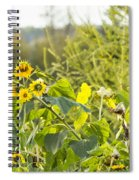 Bluejay And Sunflowers Spiral Notebook