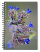 Blues A Bloomin' Spiral Notebook