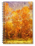 Gold Trees Spiral Notebook