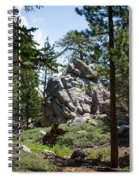 Bluff Lake Ca Boulders 1 Spiral Notebook