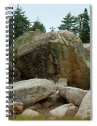 Bluff Lake Ca Boulders 3 Spiral Notebook