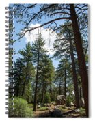 Bluff Lake Ca Through The Trees 4 Spiral Notebook