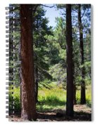 Bluff Lake Ca Through The Trees 7 Spiral Notebook