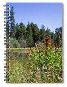 Bluff Lake Foliage 4 Spiral Notebook