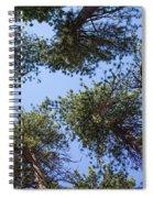 Bluff Lake Forest 2 Spiral Notebook