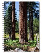 Bluff Lake Forest 3 Spiral Notebook