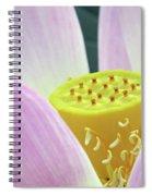 Blumen Des Wassers - Flowers Of The Water 06 Spiral Notebook