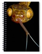 Blunthead Tree Snake Spiral Notebook