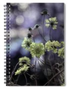 A Meadow's Blur Of Nature Spiral Notebook