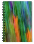 Blurred #2 Spiral Notebook