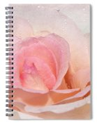 Blush Pink Dewy Rose Spiral Notebook