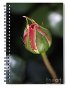 Blushing Rose Bud Spiral Notebook