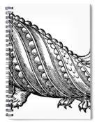 Boar Whale Spiral Notebook