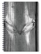 Boardwalk Fox Bw Spiral Notebook