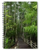 Boardwalk Through The Bald Cypress Strand Spiral Notebook
