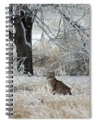 Bobcat And Heavy Frost Spiral Notebook