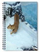 Bobcat On A Mountain Ledge Spiral Notebook